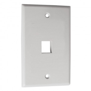 2 Port Cavity, White Keystone Wall Plate